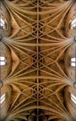 Ceiling Cathedral Of Leon In Spain