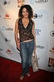 Michelle Merring at the DVD Release Party for