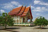 Buddhist Monk Sitting Temple, Thailand