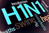 Swine Flu H1N1 Disease With Virus Vaccine