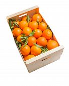 Wood box of valencian oranges on white background