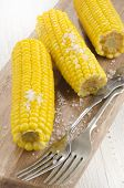 Boiled Corn Cobs With Coarse Salt