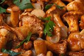 image of chanterelle mushroom  - background of roasted chanterelle mushrooms macro horizontal - JPG