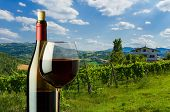 Bottle And Glass Of Red Wine On The Background Of Vineyard In Tuscany