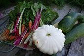 Zucchini, squash, carrots, swiss chard