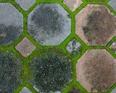 pic of interlocking  - the interlocking concrete pavement with moss growing along - JPG