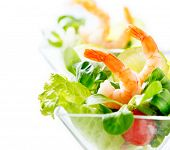 stock photo of shrimp  - Prawn salad - JPG