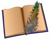 The book in a blue cover and a multi-colored feather