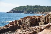 Rocks In Acadia Forest