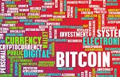 Bitcoin or Bitcoins as a Crypto Currency Concept