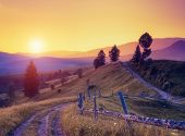 Fantastic sunny hills under morning sky. Dramatic scenery. Carpathian, Ukraine, Europe. Beauty world. Retro filtered. Instagram toning effect.