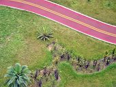 Detail Of The Bikeway On The City Of Santos In Brazil