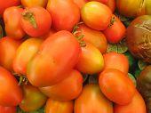 small pile of orange tones cherry tomatoes