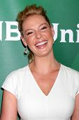 LOS ANGELES - JUL 13:  Katherine Heigl at the NBCUniversal July 2014 TCA at Beverly Hilton on July 1