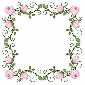 Vintage calligraphic frame with pink roses. Vector illustration.