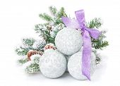 Christmas baubles and purple ribbon with snow fir tree. Isolated on white background