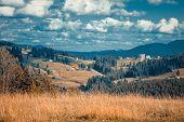 Beautiful summer view of the Carpathian Mountains