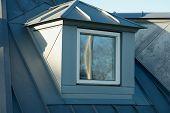 Modern Classical Vertical Roof Window
