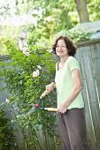Happy senior woman gardening and pruning rose bush with clippers