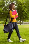 Side view of female college student with books walking in the park