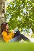 Relaxed female college student reading book against tree trunk in the park
