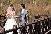 Happy Bride And Groom Walking Over Bridge (1)