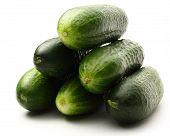 Fresh Green Cucumbers On White