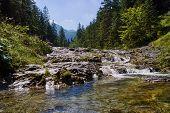 Stream in High Tatras mountains