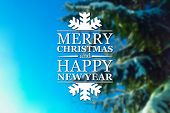 pic of blue spruce  - Merry Christmas and New Year greeting card on blurred spruce or fir - JPG