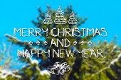pic of blue spruce  - Merry Christmas and New Year hand drawing greeting card on blurred spruce or fir - JPG