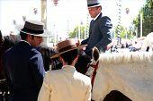 Riders At Seville Fair