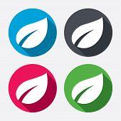 Leaf sign icon. Fresh product symbol.