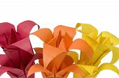 Colored origami flowers