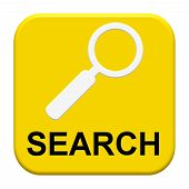 Button with Icon: Search
