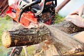 stock photo of man chainsaw  - sharp chainsaw blade cutting log of wood - JPG