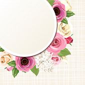 stock photo of english rose  - Vector card with pink and white roses - JPG