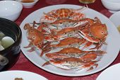 picture of cooked blue crab  - steamed crabs good taste for eating with rice - JPG