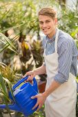 picture of flower shop  - Young handsome male florist watering flowers in flowers shop - JPG