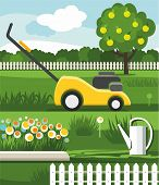 picture of lawn grass  - Vector illustration with the image of green grass - JPG