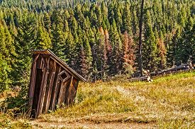 stock photo of outhouse  - Abandoned outhouse in a meadow near a forest looks like it is sinking - JPG