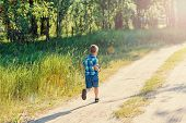 Little Boy In A Blue Plaid Shirt And Shorts Runs On A Footpath In The Wood poster