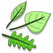 Leaf.ai