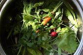 Gemüse und Kräuter-Mix In einer Pfanne