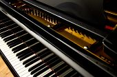 Closeup of Grand Piano Keys