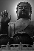 image of budha  - The giant buddha - JPG