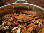 Crab - Cooked Blue Crabs 9