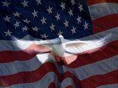 Dove & American Flag