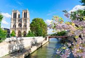 Notre Dame Cathedral Over The Seine River At Sunny Spring Day, Paris, France poster