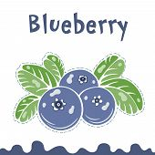 Blueberry Vector Illustration, Berries Images. Doodle Blueberry Vector Illustration In Violet Blue A poster