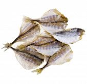 dried salted fish for beer isolated on white background